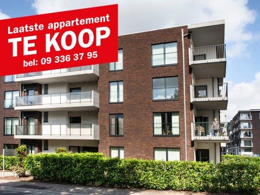 Laatse app Te koop_Oudenaarde